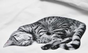 OLLIE-Snurk-1